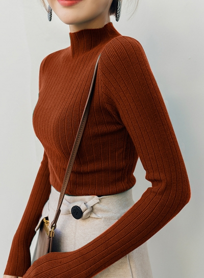 Simple and Stylish Pullover Turtleneck