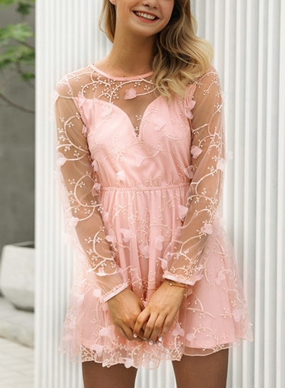 Pink Sexy Chiffon Embroidered Round Neck Long Sleeve Mesh Mini Dress
