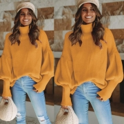 Knitted Long Sleeve Turtleneck Sweater
